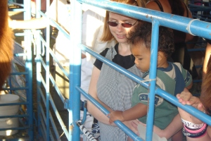 Mommy and Jack at the Llama Pen