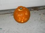 Robyn's cat pumpkin