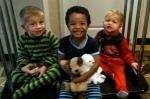 Orion, Jack, Cyrus