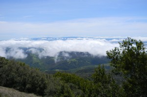 Mt. Diablo: On top of the clouds