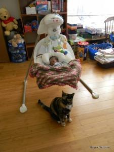 Jinxy the Guard Cat