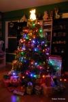 Christmas Tree Lit Up
