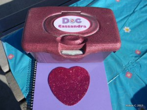 Doctor's Kit and Big Book of Boo Boos