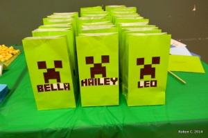 Minecraft treat bags