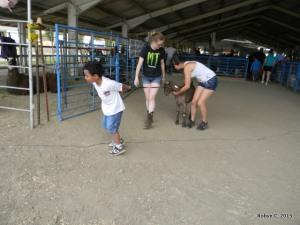 Jackson walks a goat. Sort of.