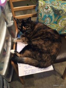 October 2014: Jinxy helps Robyn work