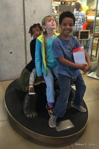 Kids on a Turtle (Cal Academy)