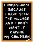 I homeschool because I have seen the village and I don't want it raising my children.